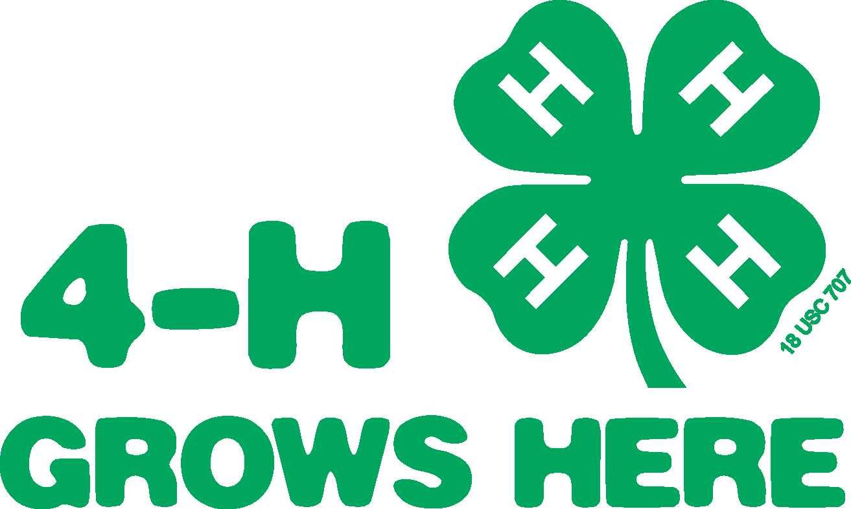 Image result for 4-h logo